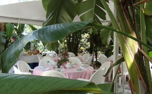 Bridal Shower on Patio